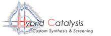 Logo Hybrid Catalysis BV (The Netherlands)